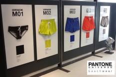 Pantone Swimwear